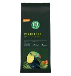 Cafea de plantatie macinata - 100 % Arabica, BIO, 250g LEBENSBAUM