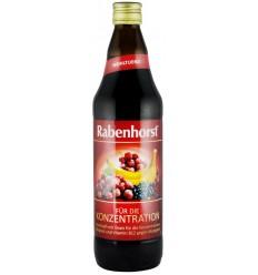 """RABENHORST – """"PENTRU CONCENTRARE"""" SUC DE FRUCTE, 0.7L"""