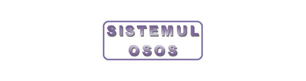 Sistemul osos